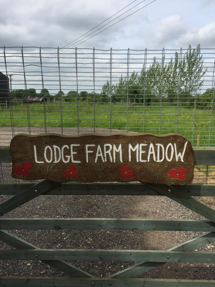 Lodge Farm Meadow Campsite, Norfolk