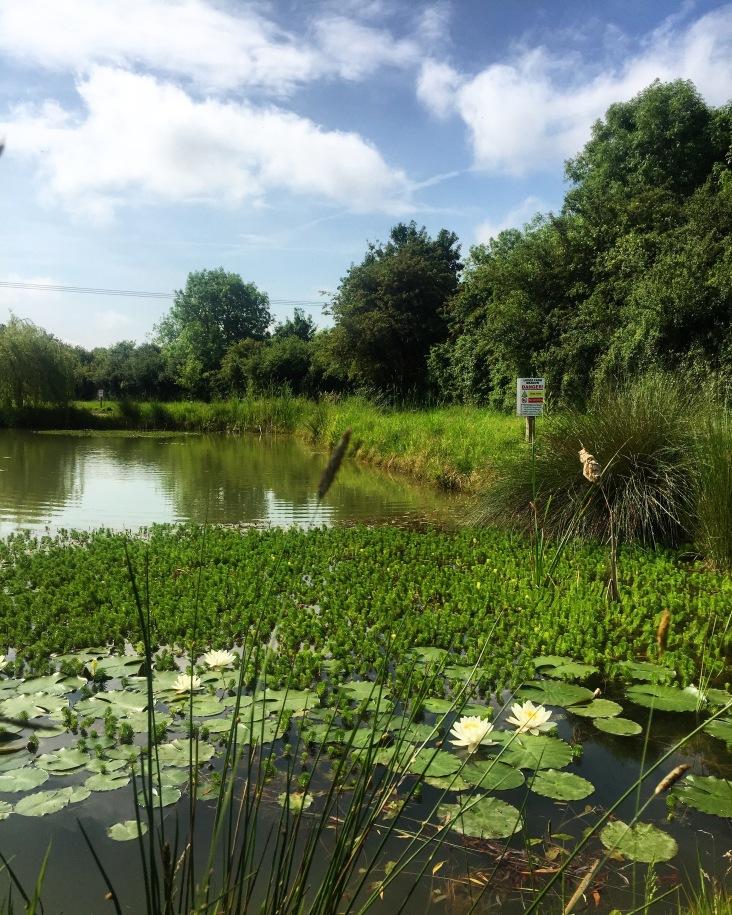 Campsite at Hilgay, fishing lakes, Norfolk Weekend